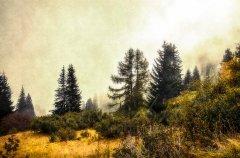 Ln18893209-Herbstliche Alpenlandschaft